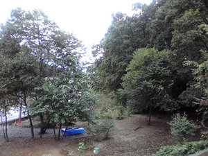 201010042.jpg